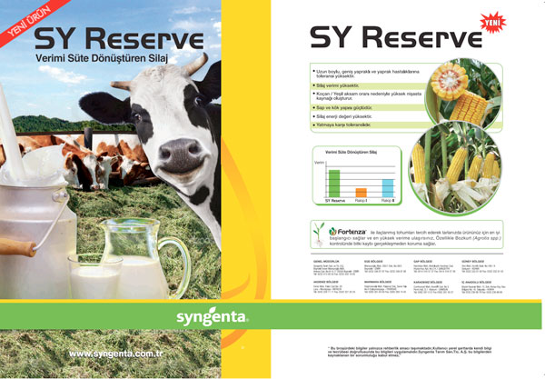 Sy Reserve